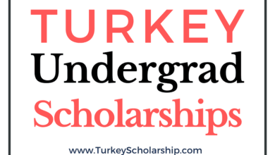 Turkey Undergrad Scholarship 2021-2022 Turkiye Burslari Scholarship for Undergraduate Program